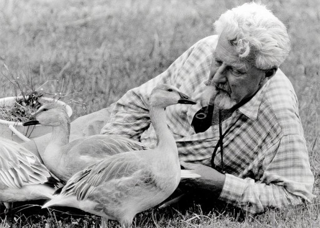 Конрад Лоренц с гусями